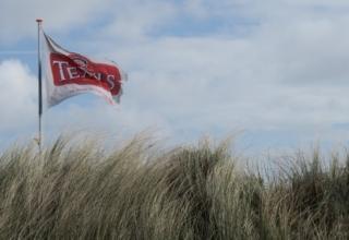 De hotspots van Texel: Skuumkoppen, Viswijven en Dorstige Tijgers